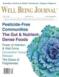 Well Being Journal issue Mar/Apr 2018
