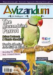 Avizandum issue February 2018