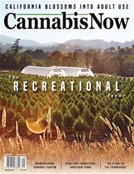 Cannabis Now issue Issue 29