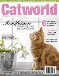 Cat World issue Issue 480