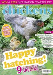 Your Chickens issue MAR 18