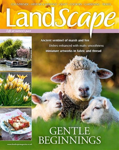 LandScape issue March 2018