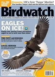 Birdwatch Magazine issue March 2018