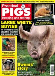 Practical Pigs issue Spring 2018