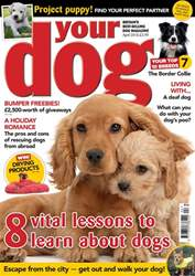 Your Dog issue Your Dog Magazine April 2018