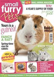 #2 Hedgehog pets issue #2 Hedgehog pets