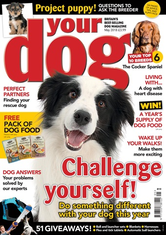 Your Dog issue Your Dog Magazine May 2018
