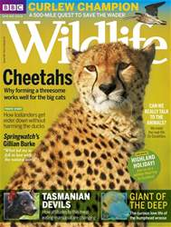 BBC Wildlife Magazine issue Spring2018