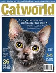 Cat World issue Issue 482