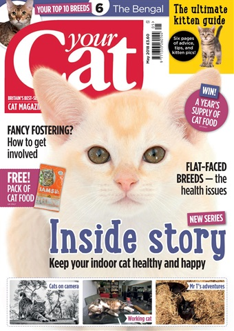 Your Cat issue Your Cat Magazine May 2018