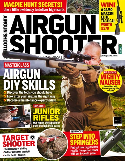 Airgun Shooter Preview