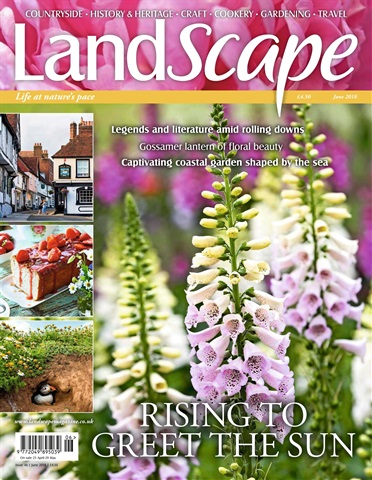 LandScape issue June 2018