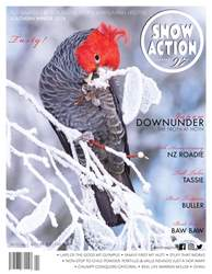 Snow Action issue Snow Action South