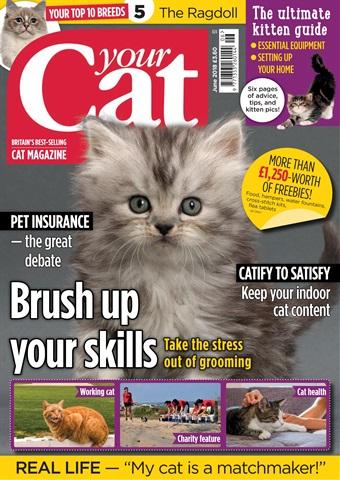 Your Cat issue Your Cat Magazine June 2018
