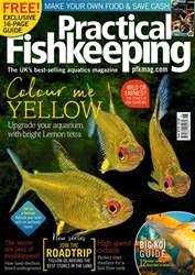 Practical Fishkeeping issue June 2018