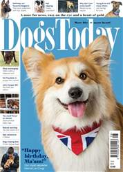 Dogs Today Magazine issue June 2018