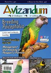 Avizandum issue June 2018