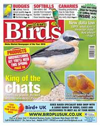 Cage & Aviary Birds issue 23rd May 2018