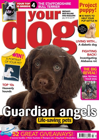 Your Dog issue Your Dog Magazine July 2018