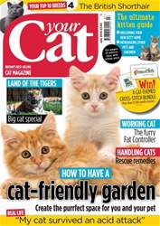 Your Cat issue Your Cat Magazine July 2018