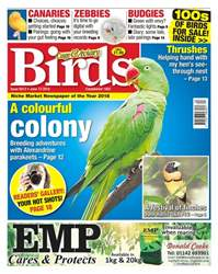 13th June 2018 issue 13th June 2018