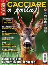 CACCIARE A PALLA issue Luglio 2018
