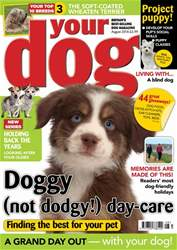 Your Dog issue Your Dog Magazine August 2018