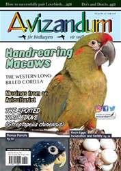 Avizandum issue July 2018