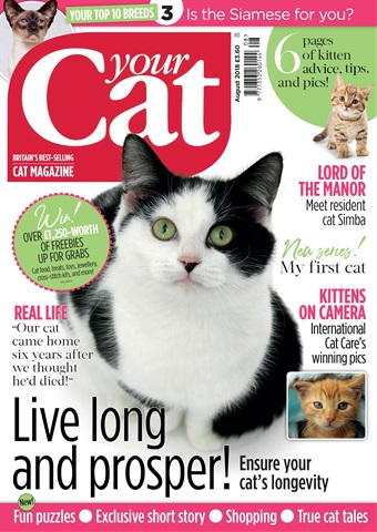 Your Cat issue Your Cat Magazine August 2018