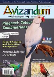 Avizandum issue August 2018