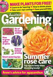 28th July 2018 issue 28th July 2018