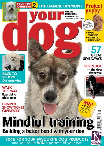 Your Dog issue Your Dog Magazine September 2018