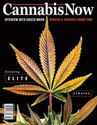 Cannabis Now issue Issue 32