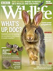 BBC Wildlife Magazine issue September 2018