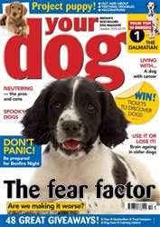 Your Dog issue Your Dog Magazine October 2018