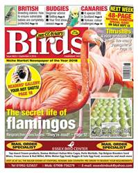 5th September 2018 issue 5th September 2018