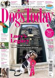 Dogs Today Magazine issue October 2018