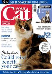 Your Cat issue Your Cat Magazine October 2018