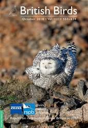 British Birds issue October 2018 | Vol 111 | 551 - 634