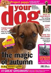 Your Dog Magazine November 2018 issue Your Dog Magazine November 2018