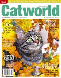 Cat World issue Issue 488