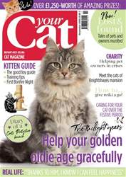 Your Cat issue Your Cat Magazine November 2018