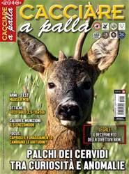 CACCIARE A PALLA issue Novembre 2018