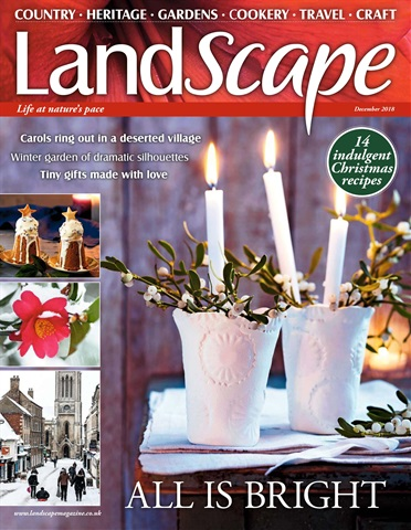 LandScape issue December 2018
