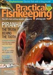 Practical Fishkeeping issue December 2018