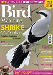 Bird Watching issue November 2018