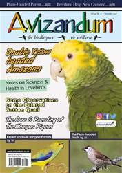Avizandum issue November 2018