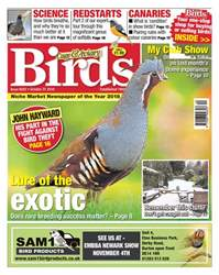31st October 2018 issue 31st October 2018
