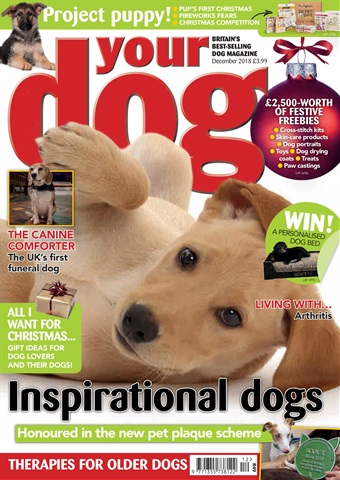 Your Dog issue Your Dog Magazine December 2018