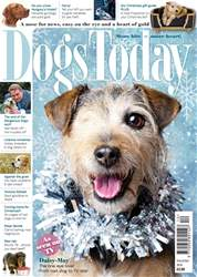 Dogs Today Magazine issue December 2018